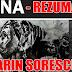 """Rezumat pe capitole """"Iona"""" de Marin Sorescu"""