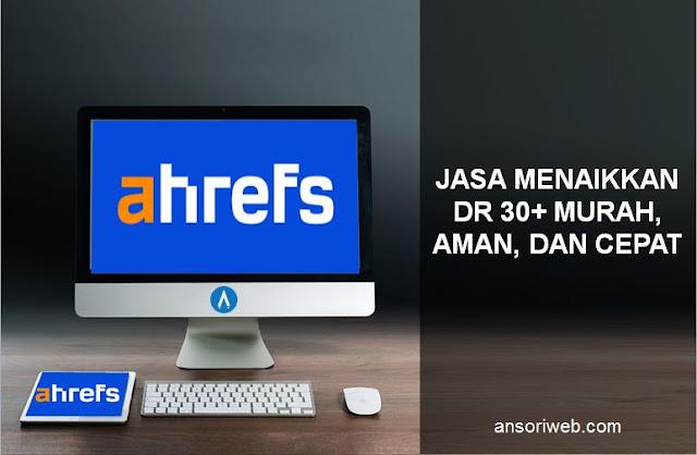 Jasa Menaikkan DR 30+ Murah, Aman, dan Cepat