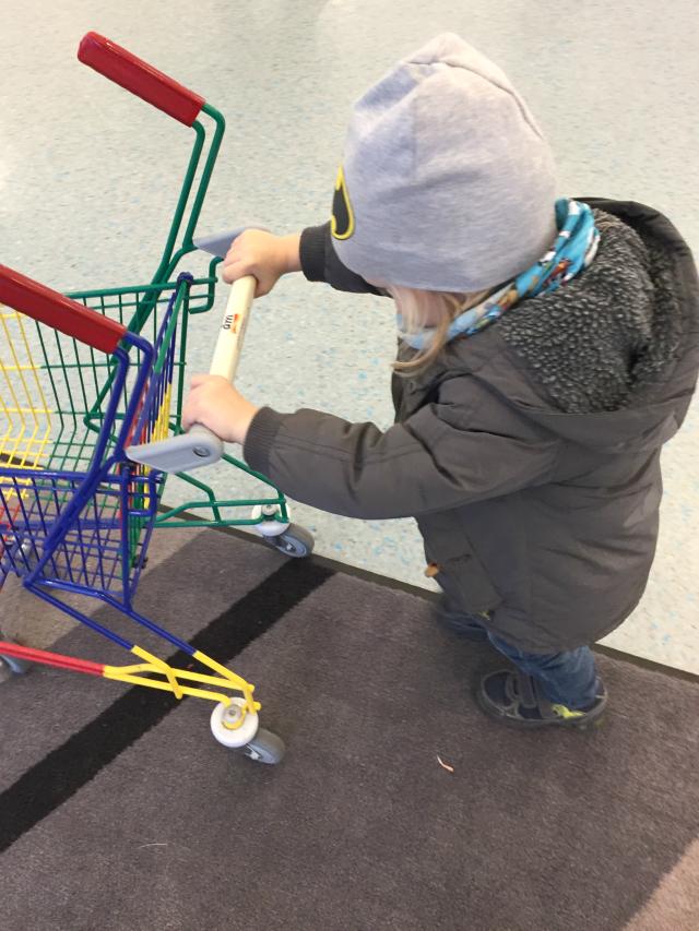 Wutz mit Einkaufswagen