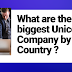 What are the biggest Unicorn Company by Country ?