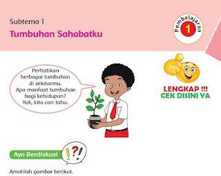 kelas 6 tema 1 Subtema 1 Tumbuhan Sahabatku www.simplenews.me