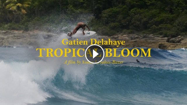 From The Caribbean To Indo Gatien Delahaye Tropical Bloom