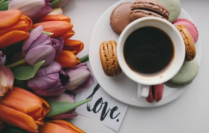 kafa-ness-filter_kafa-kapucino-espreso-latte-turska_kafa
