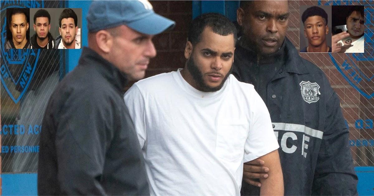 Nueve trinitarios entre ellos dos sospechosos por asesinato de Junior arrestados en El Bronx y el Alto Manhattan