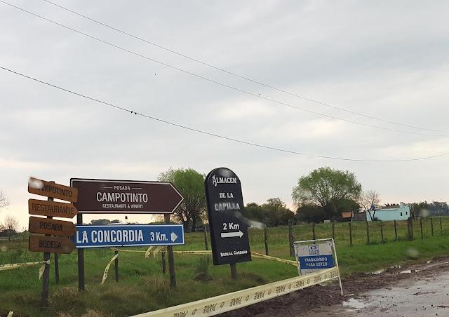 Blog Apaixonados por Viagens - Vindima no Uruguai