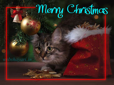 lovely christmas images