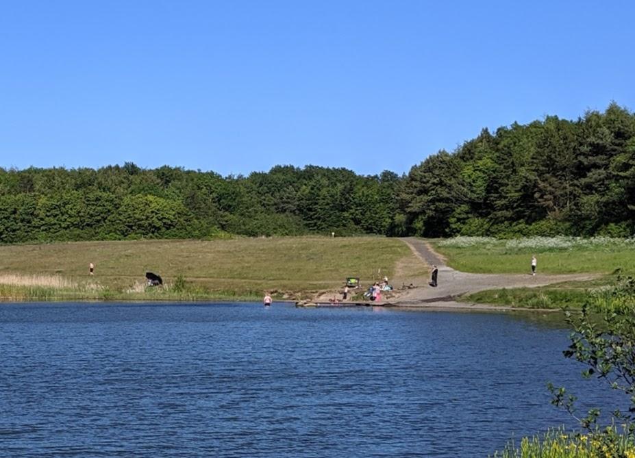 Queen Elizabeth II Country Park Walk paddling