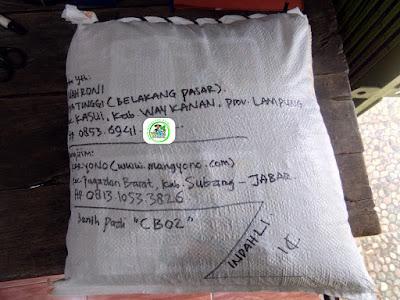 Benih Pesanan   NAHRONI Waykanan, Lampung.  (Setelah Packing)