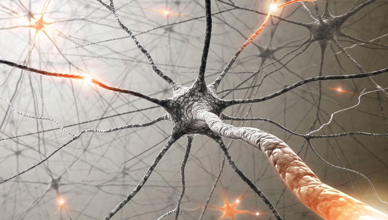 De que modo a produção de novos neurônios pode combater a depressão?