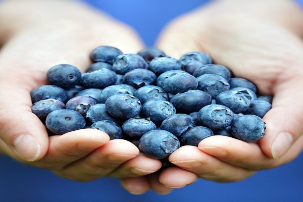 how many calories in blueberries