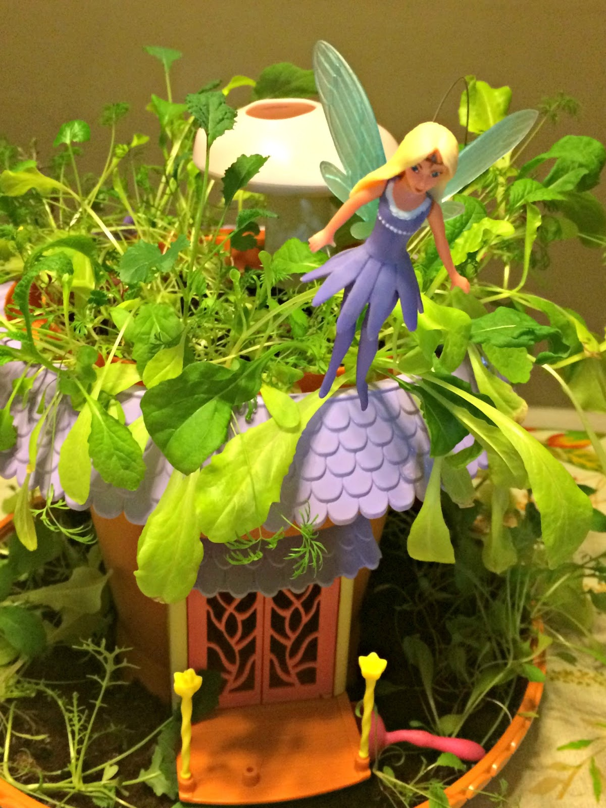 A GEEK DADDY: My Fairy Garden Magical Cottage From