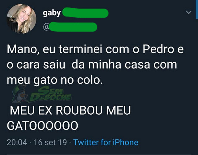 DEVOLVE O GATO, PEDRO