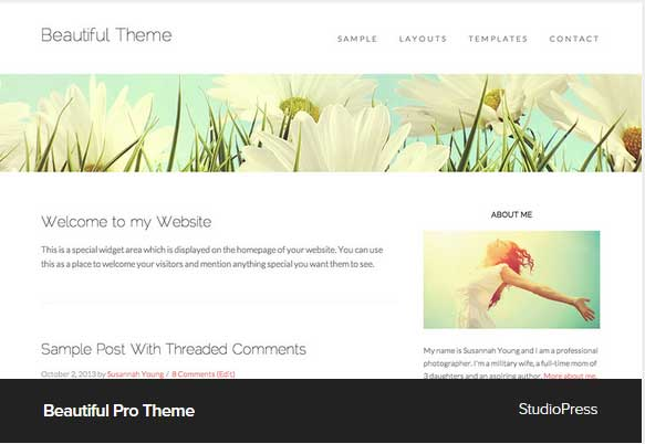 Beautiful Pro Theme Award Winning Pro Themes for Wordpress Blog : Award Winning Blog