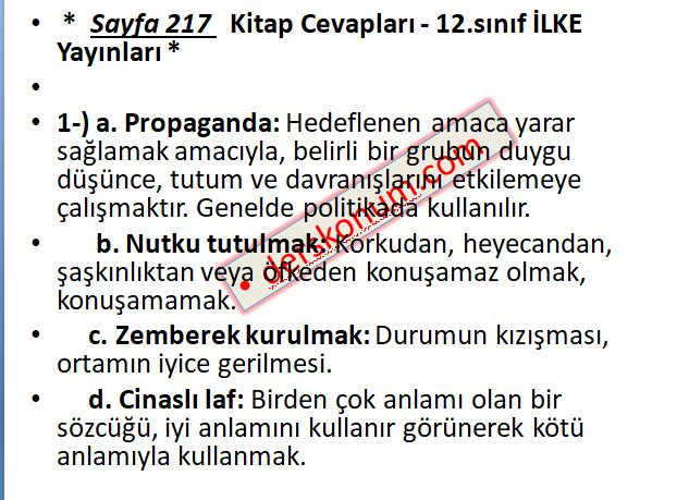 12.Sınıf Türk Dili ve Edebiyatı Ders Kitabı Cevapları İlke Yayınları Sayfa 217