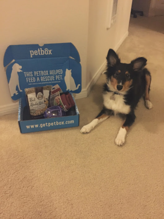 Petbox January 2015 Review