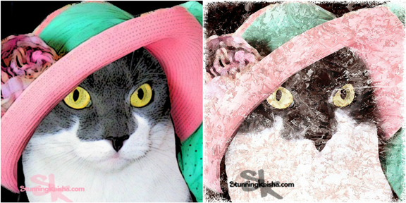 The Stunning Cat in the Straw Hat