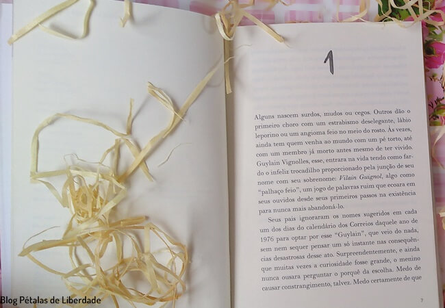 resenha, livro, O-leitor-do-trem-das-6h27, Jean-Paul-Didierlaurent, Intrinseca, quote