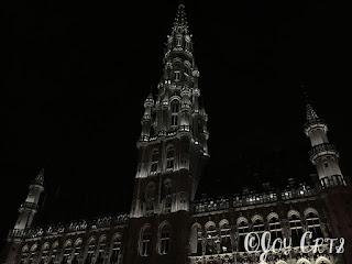 hôtel de ville de bruxelles de nuit