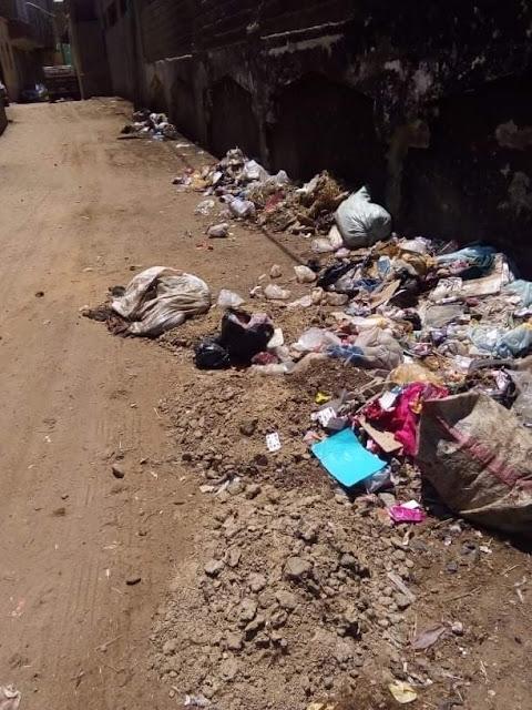 القمامة والطيور النافقه حول المدارس بقرية الصلعا بسوهاج في انتظار استقبال التلاميذ