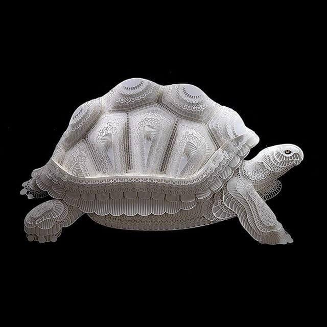 07-Tortoise-Patrick-Cabral-www-designstack-co
