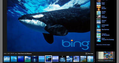 Bing Image Search Upset Image Owners