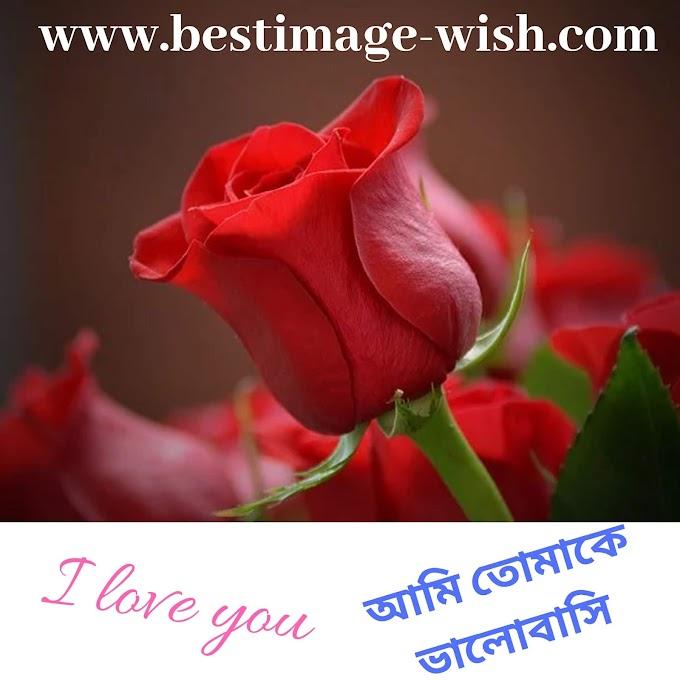 Propose korar sms bangla | ভালোবাসার রোমান্টিক এসএমএস ও কবিতা | new love sms | Bangla l love you sms,images,kobita