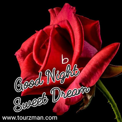 good night sweet dreams images for lover