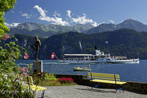 The fastes Steamer - DS GALLI in front of the central Switzerland alps