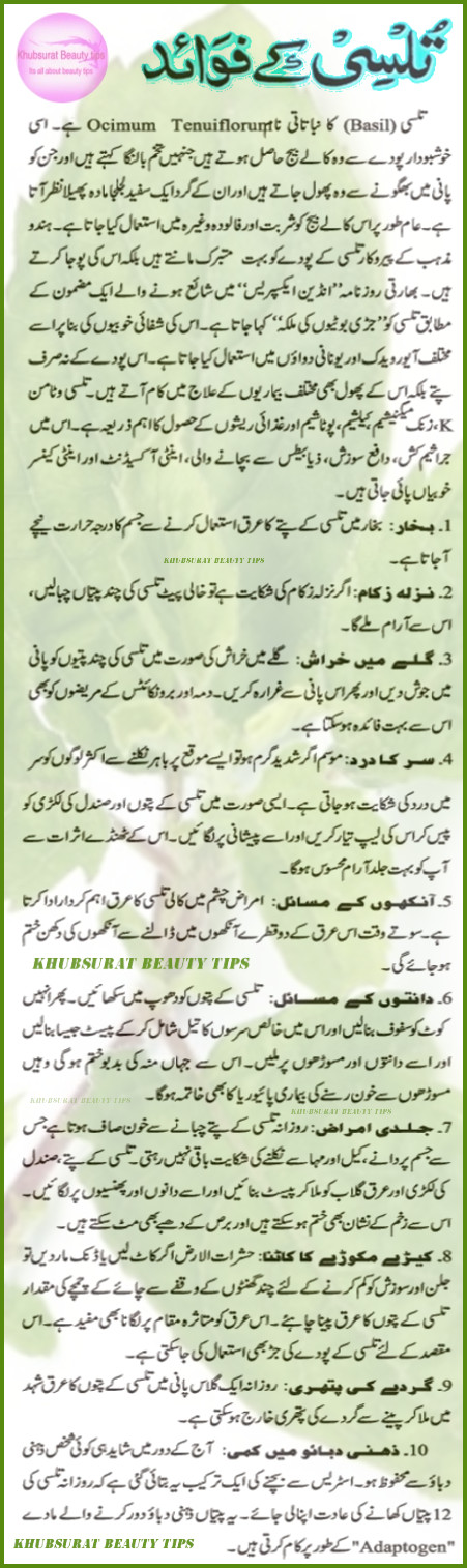 tulsi benefits in urdu tulsi ky faiday