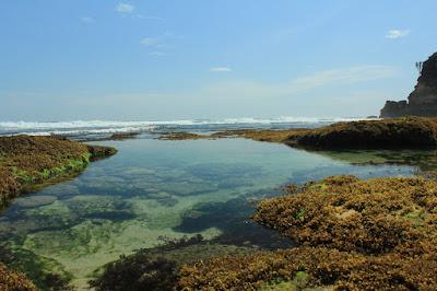 Wisata Pantai Jonggring Saloko Malang