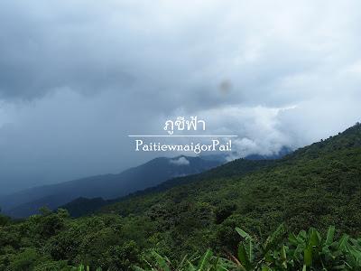 เที่ยวภูชี้ฟ้าหน้าฝน