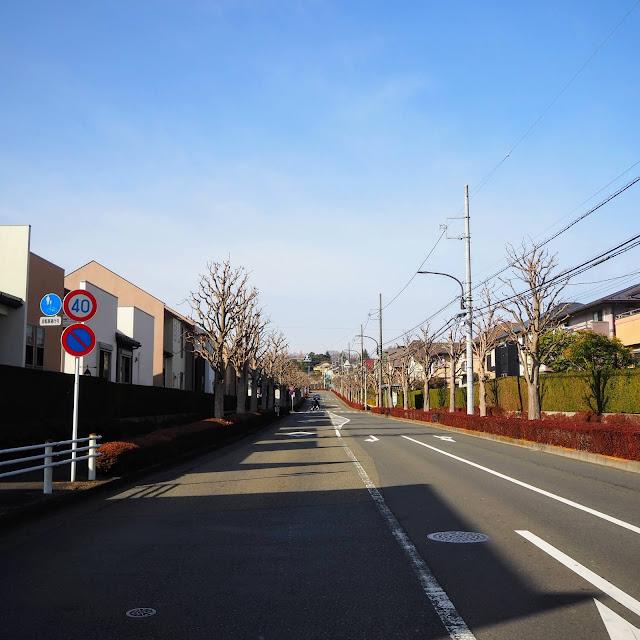薬師台通りから藥師金井通りへ右折