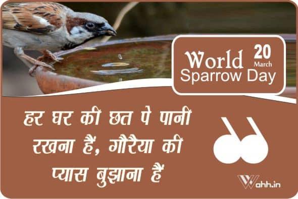 Vishv Gauraiya Divas Slogans