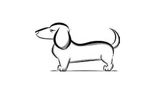 dibujos de perros salchichas faciles