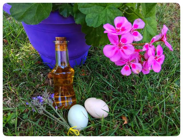 diy hair mask with egg olive oil and levander alleycraft