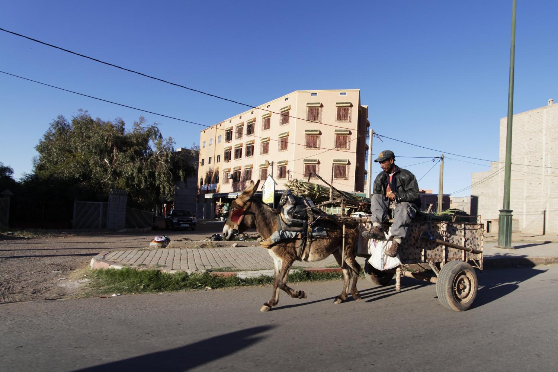 Hombre montado en un carro tirado por un burro