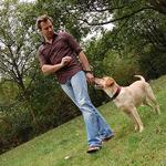 caminhando com cães