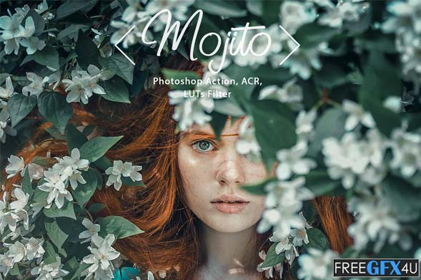 8 Photoshop Actions ACR LUT Mojito