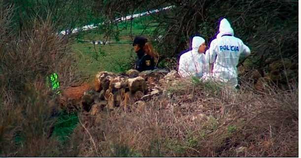 Encuentran sin vida a un hombre con mordeduras de perros en la Laguna, Tenerife