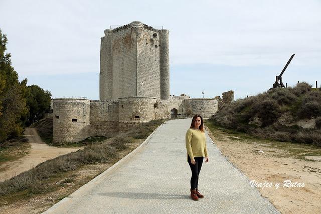 General del Castillo de Íscar, Valladolid