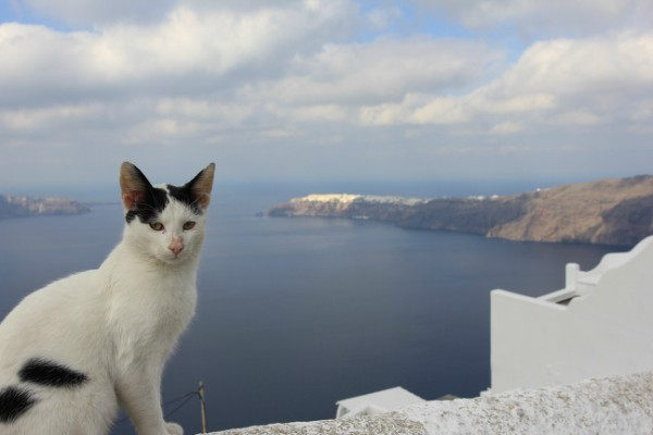 santorini best views