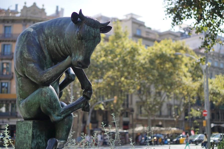 考える牛(El toro assegut)