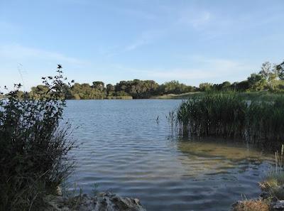 laghi alimini