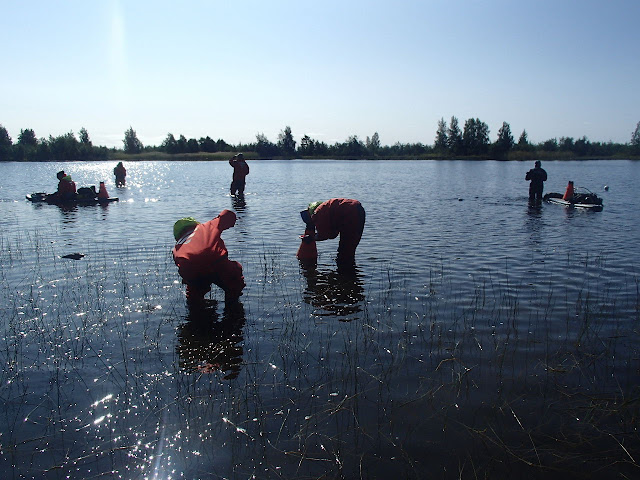 Monia pelastautumispukuisia henkilöitä kahlaamassa ja SUP-lautailemassa järvessä