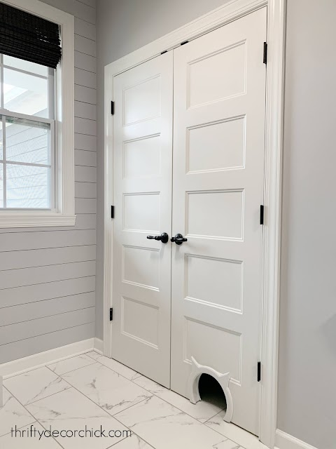cat litter closet with cat door