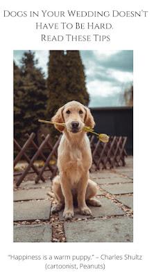 Dogs in Your wedding-wedding planning-weddings-Weddings by KMich- Philadelphia PA
