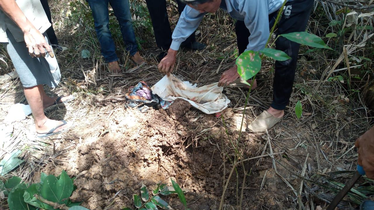 BREAKING NEWS ! Warga Temukan Mayat Bayi Laki-laki di Kebun