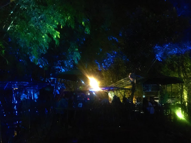 Light Show at The Grove by Serenity Busay