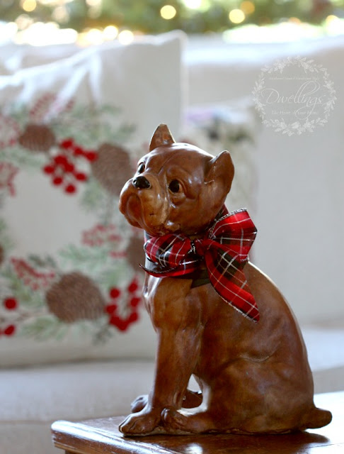 The cutest antique chalk boxer with plaid Christmas ribbon.
