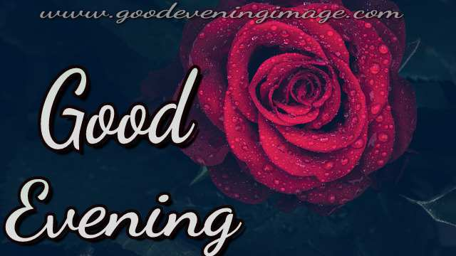 Good evening photos download